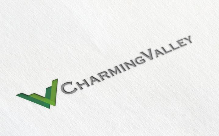 charming valley logo design 名片设计
